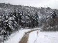 snijeg134
