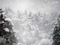 snijeg137