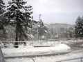 snijeg140