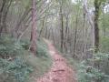 Put prema Velom vrhu