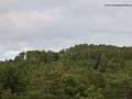 Šuma 4-4